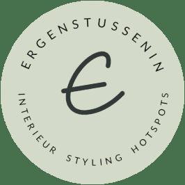Logo ergenstussenin